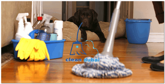 شركات تنظيف منازل فى دبي