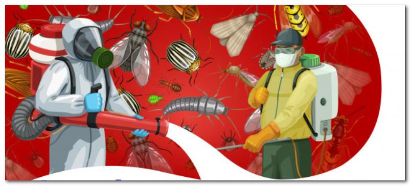 افضل شركة رش حشرات
